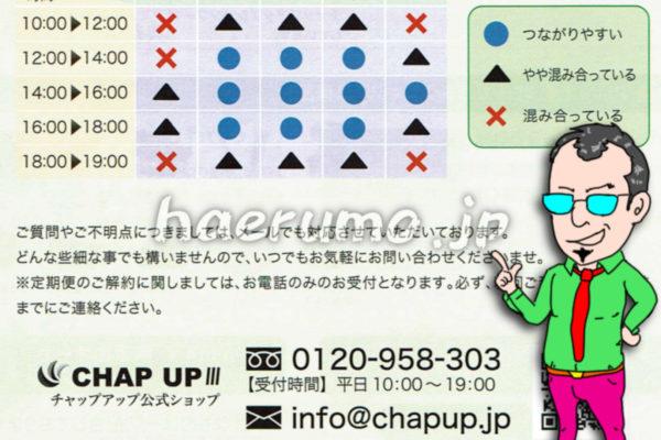 チャップアップの電話番号は0120-958-303